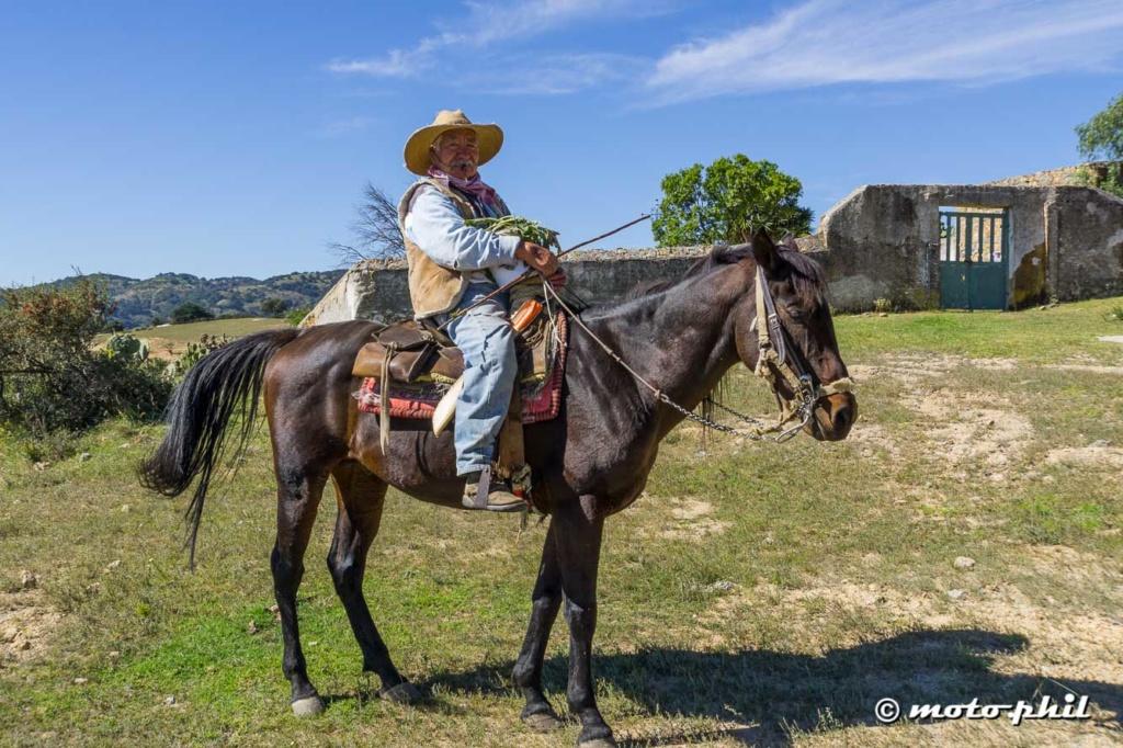 Mexican farmer on a horse